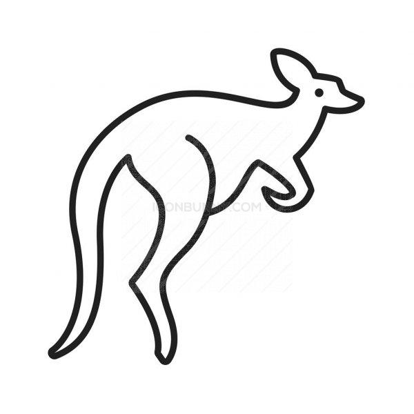 kangaroo line icon